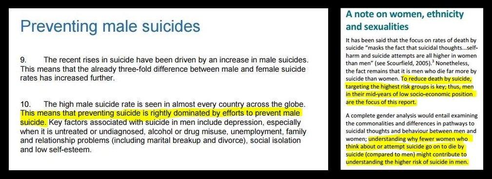 preventing-suicide-report-horz