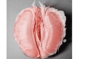 grapefruit-vagina